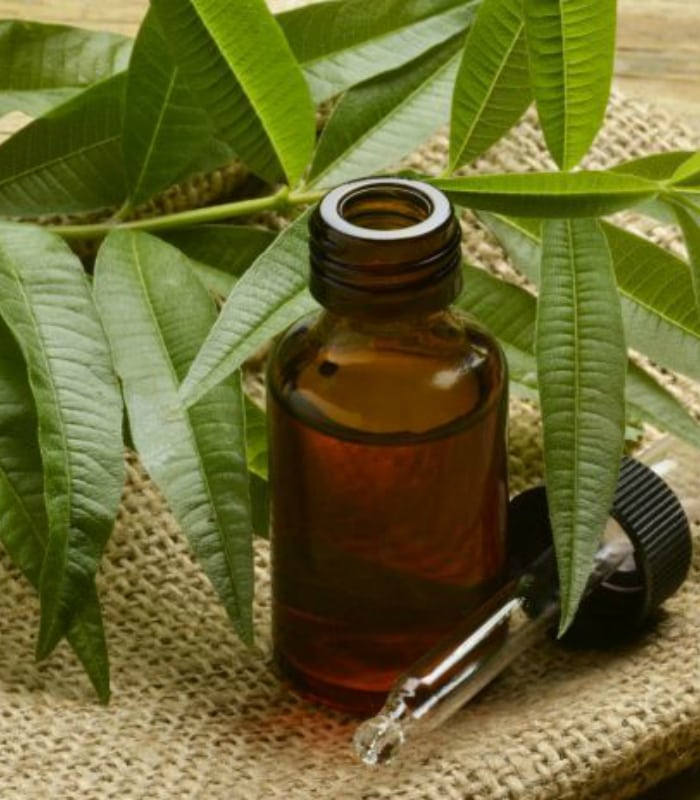services | aromatherapy | essential oils | the holistic health center of peoria